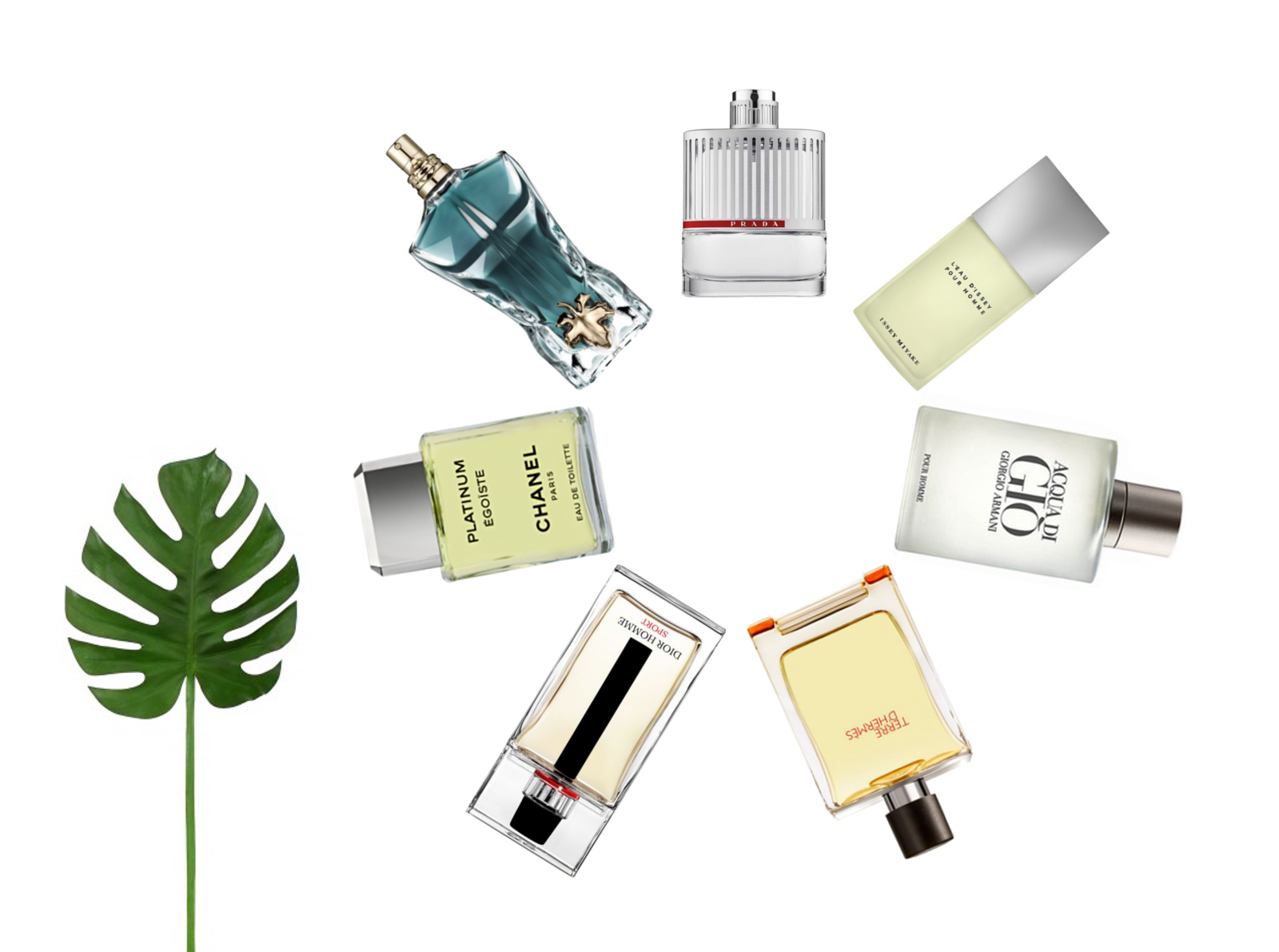 Das perfekte Herrenparfum für den Sommer